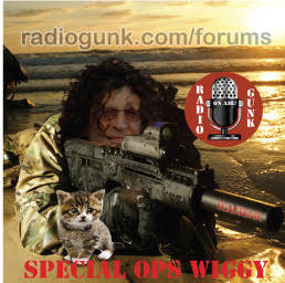 Weaks in Review Part 3 – Special Ops Wiggy