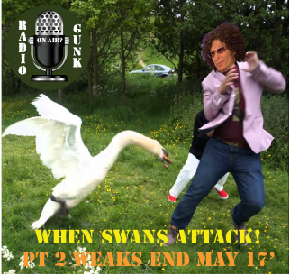 Finally! Weaks in Review for End of May 17′ – When Swans Attack!