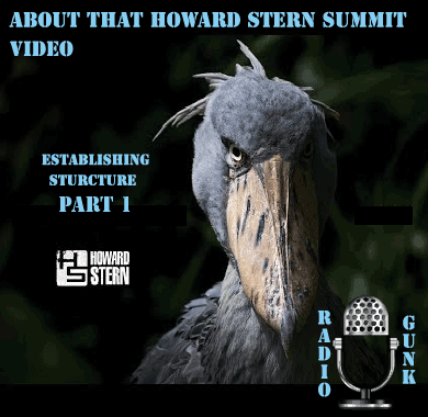 About that Howard Stern Summit Video Live